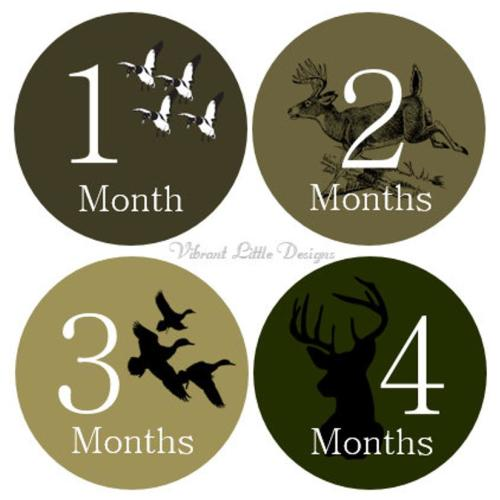 free shipping 53c01 c18b0 Monthly Milestone Stickers Boy, Monthly Baby Stickers, Month to Month  Stickers Boy, Camo, Antlers, duck hunting, Deer  122, No Add-Ons