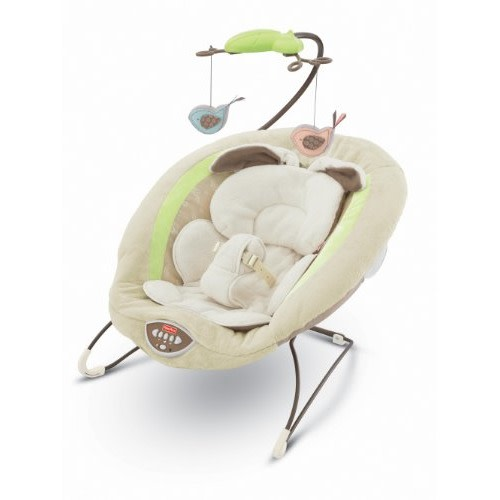 Fisher-Price Fisher-Price Deluxe Bouncer - $58.93