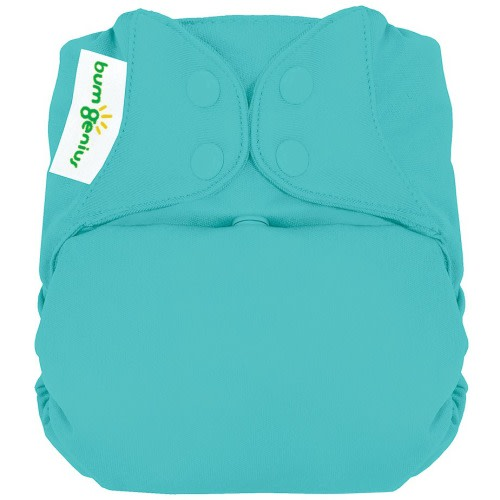 BumGenius All-in-One Cloth Diaper  - $19.99