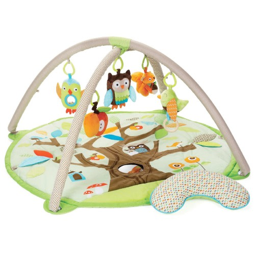 Skip Hop Treetop Friends Activity Gym - $74.99