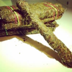 sejarah ganja di thailand thai stick