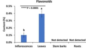 flavonoid - bagian tanaman ganja - senyawa metabolit