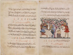 Pengetahuan Ganja Medis Arab