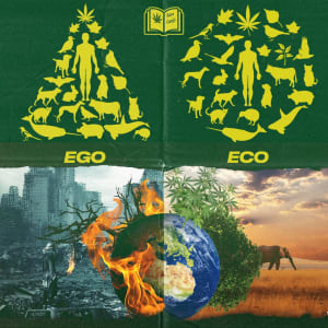 ekosentrisme - legalisasi ganja