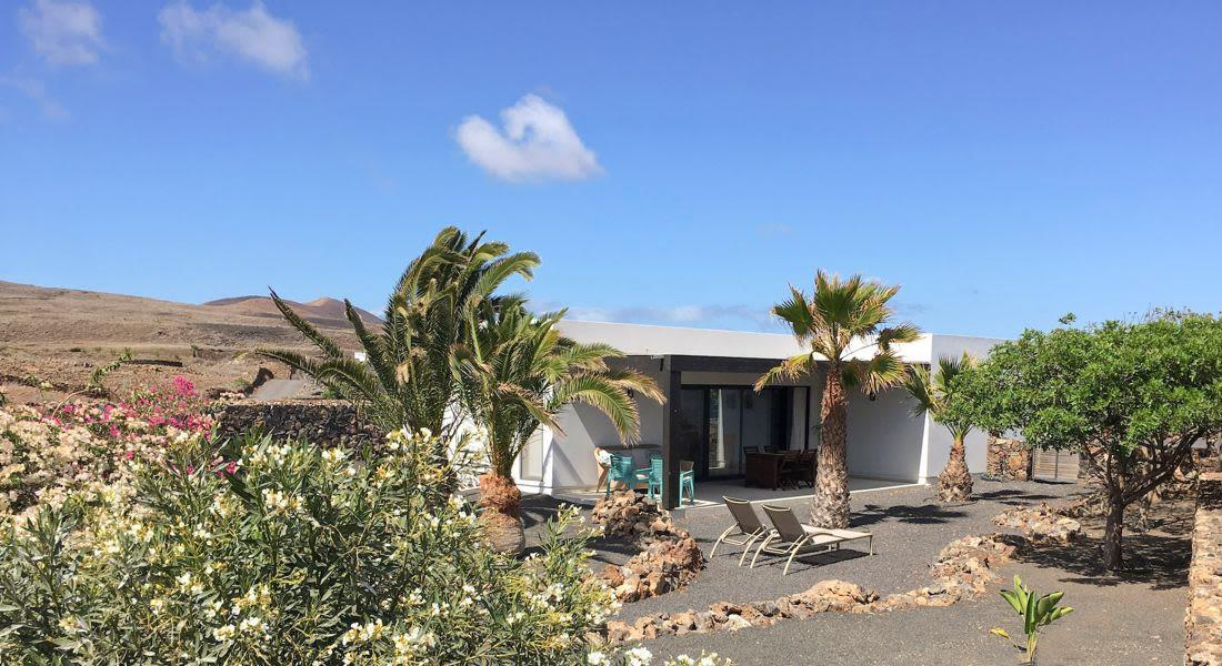Modern house + tropical garden