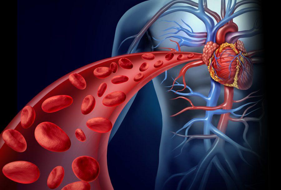 Benefícios do Óxido Nítrico para o Organismo e a Hipertensão
