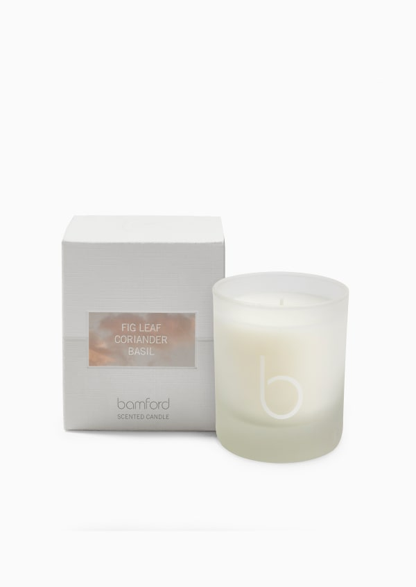 Fig Leaf Single Wick Candle