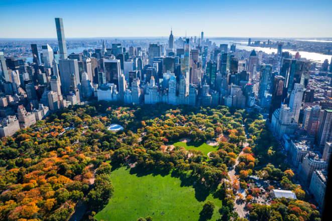 New York office -