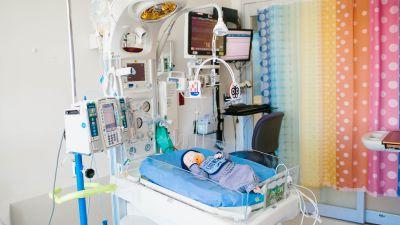 Wolfson Children's Hospital Advanced Heart Technology