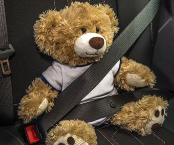 A teddy bear sits in the car with his seat belt on.