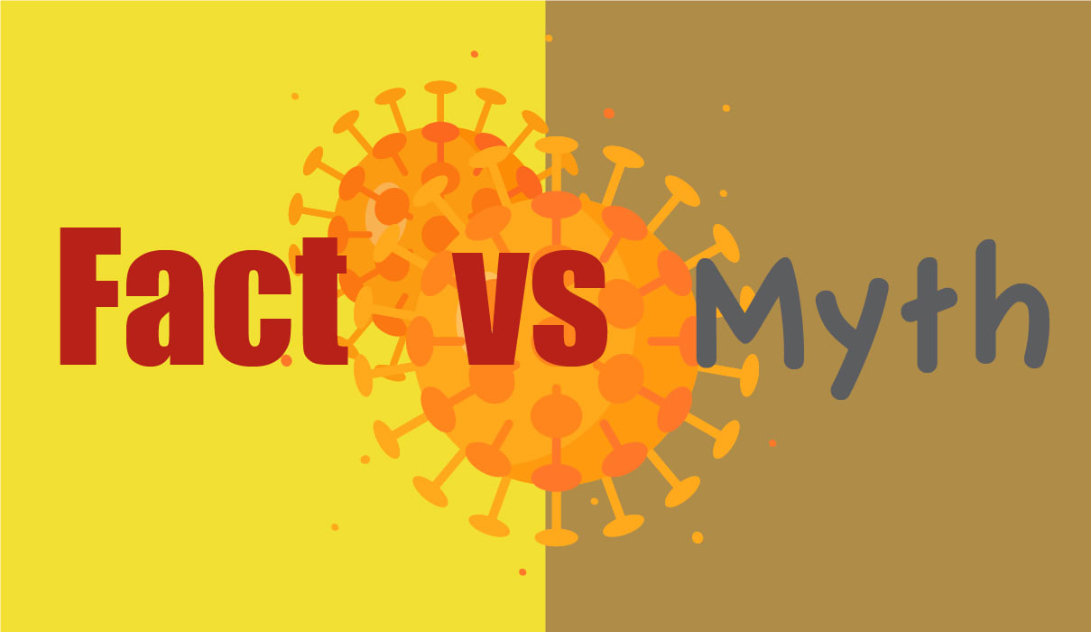 photo for Separate coronavirus fact from fiction article