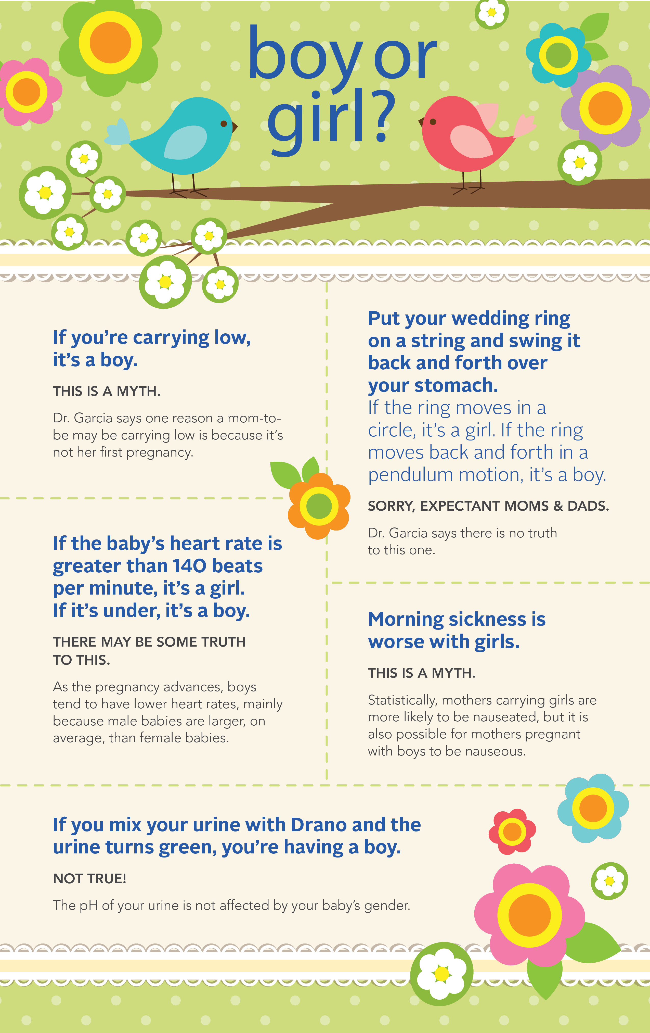 Pregnancy Sex Myth