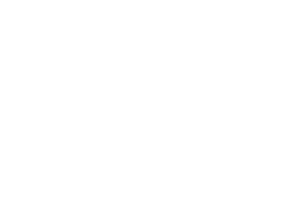 Steam Railway logo