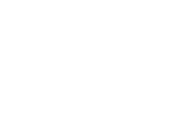Performance Bike logo
