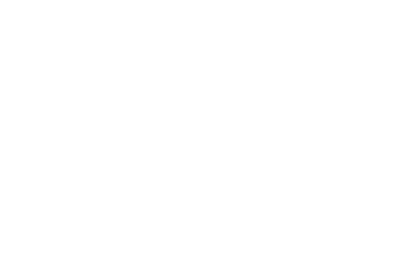 Pet Product Marketing logo