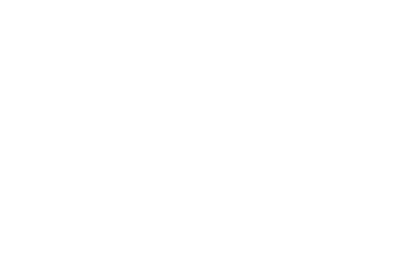 Car Mechanics logo