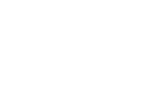 What Bike logo