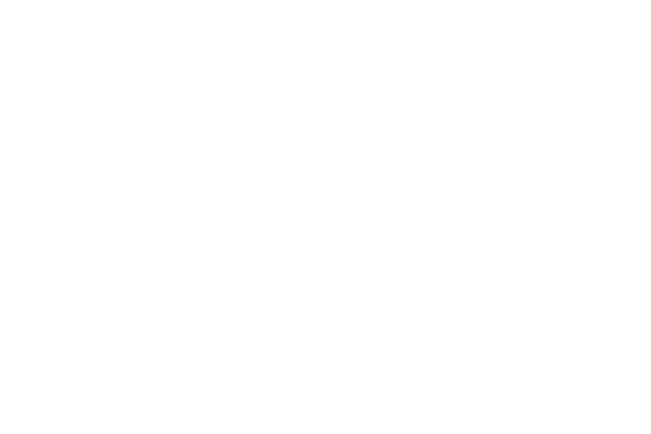 Commercial Fleet logo