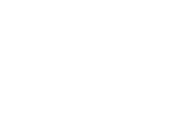 Hallam logo
