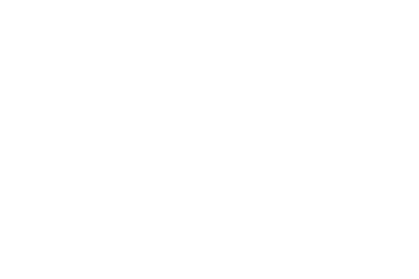 Practical Sportsbikes logo
