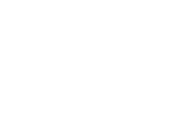 Bikes Unlimited logo