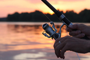 Improve Your Coarse Fishing image