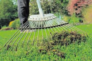 Garden News image