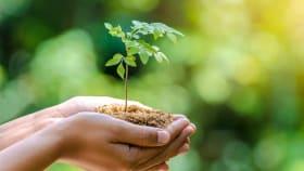 Nachhaltigkeit bei der BayWa