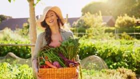 Gartenkalender für Juni