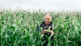 Pflanzenschutz & Saatgut