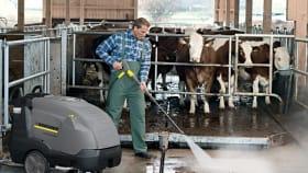 Stallhygiene & Tierhygiene