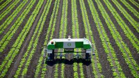 Autonome Feldroboter für die Unkrautbekämpfung