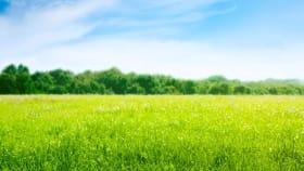 Pflanzenschutz für Grünland