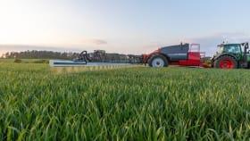 Pflanzenschutz für Mais