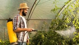 Bio Pflanzenschutzmittel