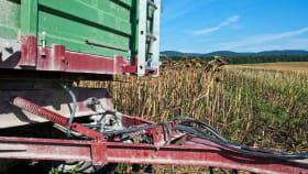 Bremse landwirtschaftliche Anhänger