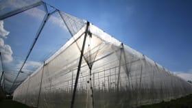 Geschlossene Anlage: Käfigsysteme bieten optimalen Schutz
