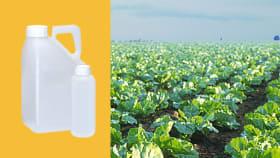 Herbizide für Zuckerrüben