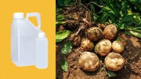 Herbizide für Kartoffeln