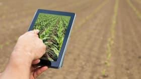 Witamy w świecie NEXT Farming !