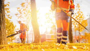 Forst- und Gartengeräte