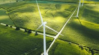 Bild zeigt Windräder auf einer Wiese