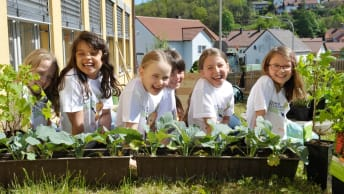 Education in the vegetable patch