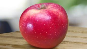 Das Bild zeigt einen roten Apfel