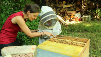 Beekeeping with the children of the Tillmann children and youth centre.