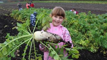 Landwirtschaft erleben am Obergrashof
