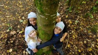 Die Waldschule