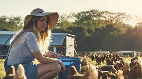 Mach deine Hühner glücklich – als Produkttester in der Community.