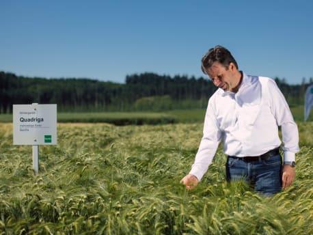 Pflanzenbauempfehlungen Getreide