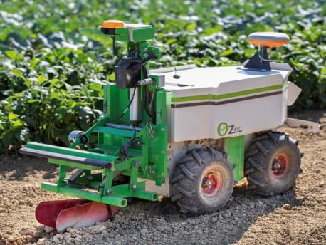 Oz Roboter